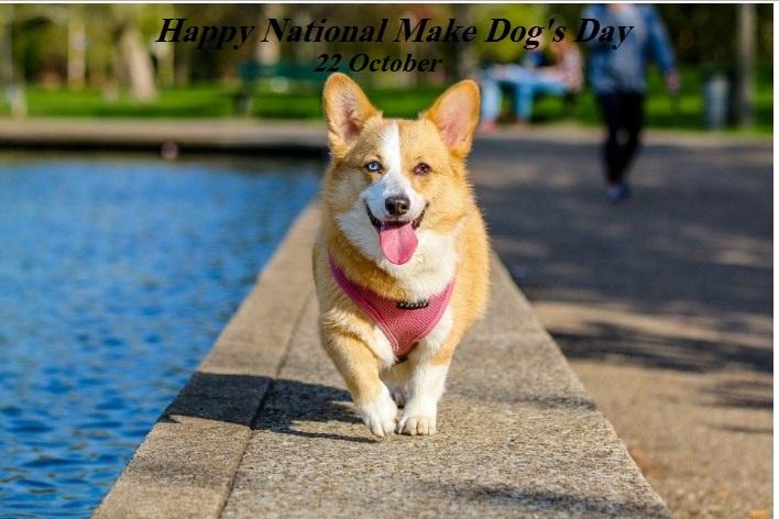 National make dog day 2019
