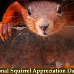 National Squirrel Appreciation Day 2020 ( 21st Januray)