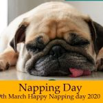 Napping Day – 9th March Happy Napping day 2020