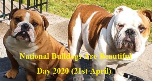 National Bulldogs Are Beautiful Day 2020