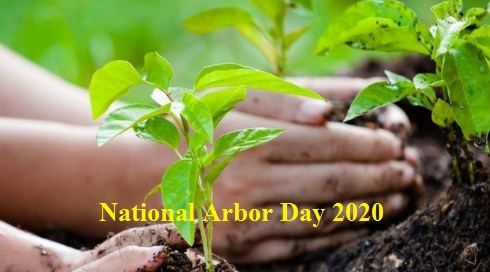 National Arbor day 2020