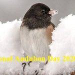 Audubon Day – National Audubon Day 2020 (26th April)