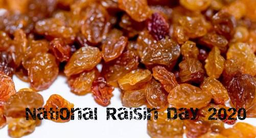 National Raisin Day 2020