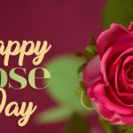 National  Rose Day – Happy National  Rose Day 2021 Quotes, Wishes, Messages, Text, SMS, Greetings, Sayings, Date, History, Facts, Celebration Ideas, & Images