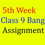 Class 9 Assignment Bangla 5th week