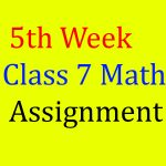 5th Week Class 7 Math Assignment