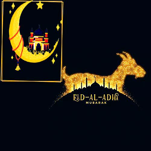 Eid Ul Adha 2021picture