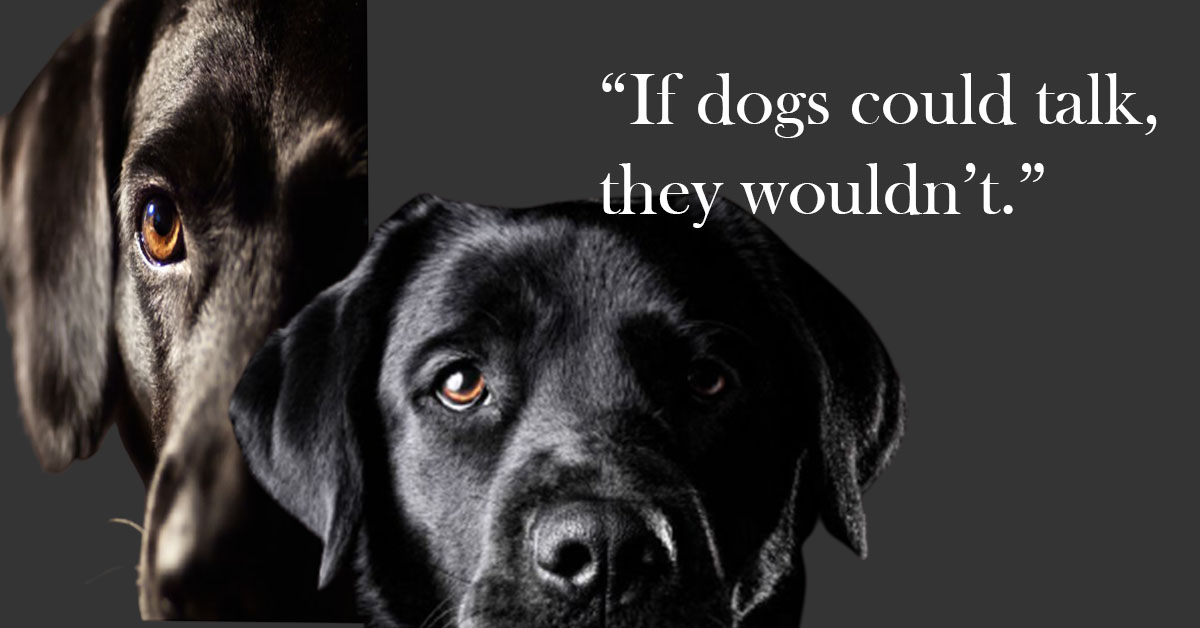 National Black Dog Day 2021 Quotes,