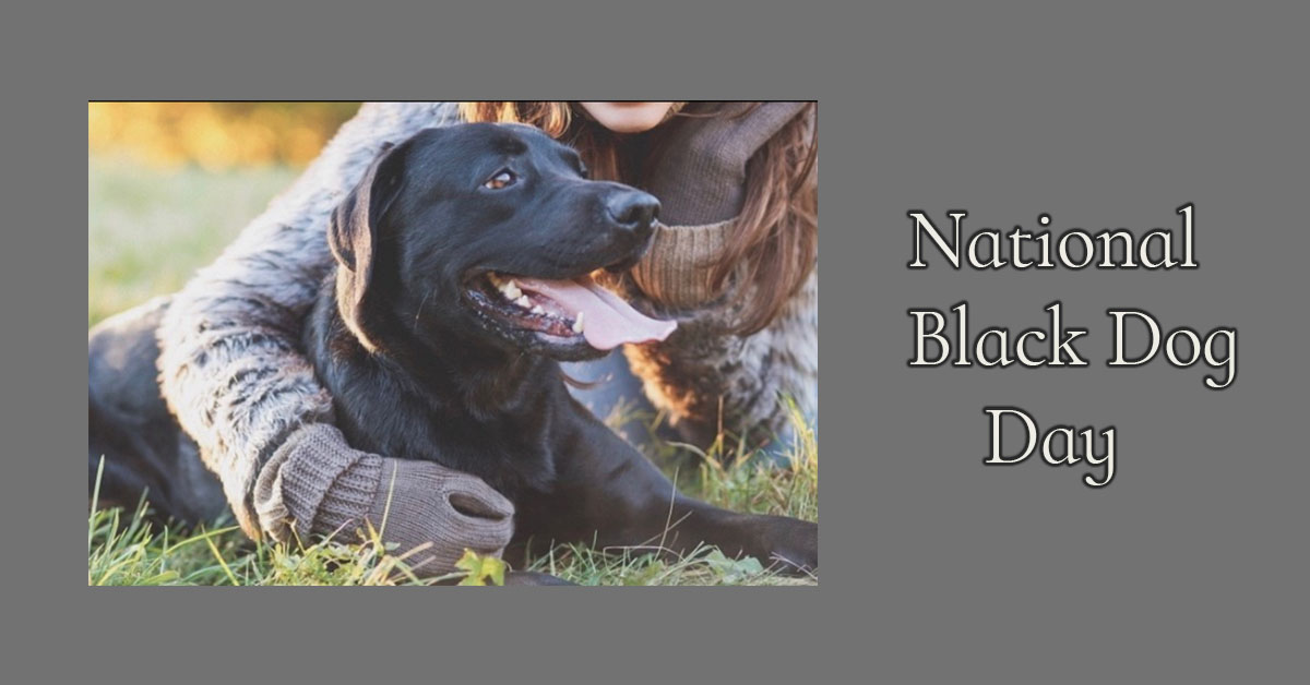 National Black Dog Day 2021 Images, Picture, Photos, Wallpaper